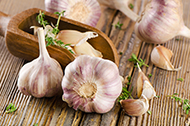 odorless garlic extractGarlic extract
